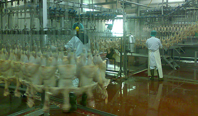 Food inspection of the 2nd largest food exporter in a very bad state